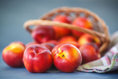 Nectarines Stock Images