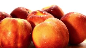 Nectarines stock video