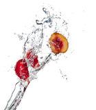 Nectarines in water Stock Image
