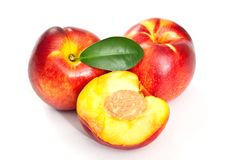 Nectarines on white background Stock Photos