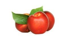 Nectarines Stock Photos