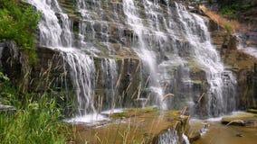 Nedanför Hector Falls Loop stock video
