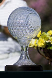 Nedbank Golf Challenge Seniors Trophy. Sun City - Nedbank Golf Challenge, Seniors - crystal glass trophy Stock Photography