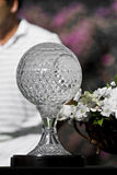 Nedbank Golf Challenge Seniors Trophy Royalty Free Stock Photos