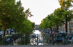 NEDERLÄNDERNA AMSTERDAM - OKTOBER 24, 2015: Bro på flodkanalen i höst på Oktober 24 i Amsterdam - Nederländerna Arkivbilder