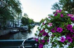 NEDERLÄNDERNA AMSTERDAM - OKTOBER 24, 2015: Bro på flodkanalen i höst på Oktober 24 i Amsterdam - Nederländerna Arkivfoton