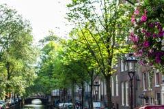 NEDERLÄNDERNA AMSTERDAM - OKTOBER 24, 2015: Bro på flodkanalen i höst på Oktober 24 i Amsterdam - Nederländerna Arkivbild