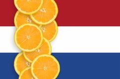 Nederländerna sjunker och den vertikala raden för citrusfruktskivor fotografering för bildbyråer