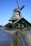 nederländsk schanszaanse Royaltyfri Fotografi