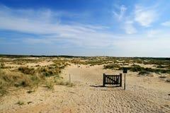 nederländska dyner Fotografering för Bildbyråer