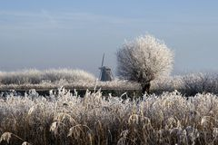 Nederland Royalty Free Stock Photos