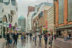 Nederland - Den Haag Stock Afbeelding