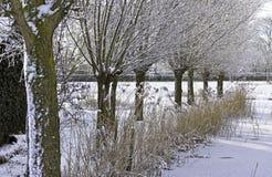 Nederlands de winterlandschap Royalty-vrije Stock Fotografie