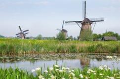 Nederlands landlandschap met windmolens in de lente Royalty-vrije Stock Foto's