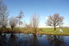 Nederlands Landschap Stock Foto's