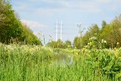 Nederlands landschap Stock Fotografie