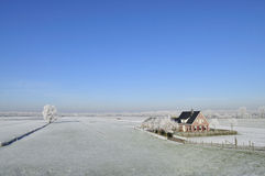 Nederlands landschap in de winter Stock Afbeelding