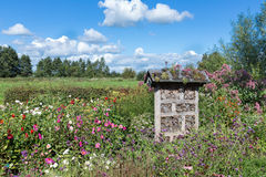Nederlands nationaal park met insectenhotel in kleurrijke tuin Stock Foto
