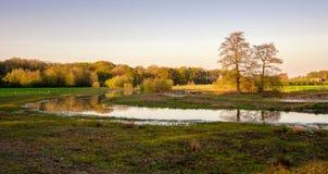 Nederlands rivierlandschap tijdens zonsondergang dichtbij de stad van Almelo royalty-vrije stock afbeeldingen