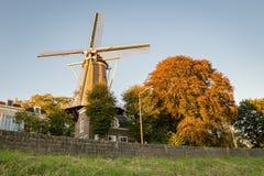 Nederlandse die windmolen en bomen in de herfstkleuren in Gouda, Holland worden gesitueerd royalty-vrije stock foto