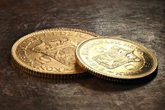 Nederlandse gouden muntstukken Stock Fotografie