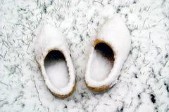 Nederlandse houten schoenen in de sneeuw Royalty-vrije Stock Foto