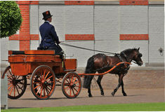 Nederlandse Koninklijke ruiter met bus Het Loo The Netherlands Stock Foto