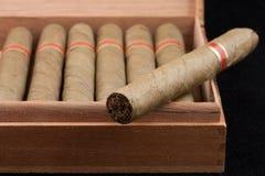 Nederlandse Sigaren in een houten doos Stock Afbeelding