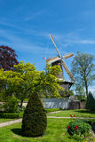Nederlandse traditionele scène Stock Fotografie