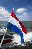 Nederlandse vlag Stock Foto's