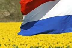 Nederlandse vlag Royalty-vrije Stock Foto