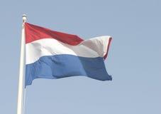 Nederlandse vlag Stock Foto