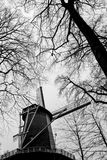 Nederlandse windmolen Stock Foto