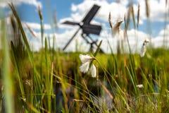 Nederlandse windmolen in het landschap van de Nederlandse polder met moeras p Stock Afbeelding
