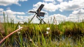 Nederlandse windmolen in het landschap van de Nederlandse polder met moeras p Royalty-vrije Stock Foto's