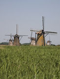 Nederlandse windmolens in Kinderdijk 9 stock foto