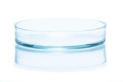 Nedersta halva av den glass Petri maträtten Fotografering för Bildbyråer