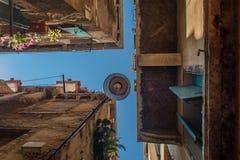 Nedersta sikt av den traditionella gatalampan på ett gammalt Venetian hus med gröna och färgrika växter på fönstren i Fotografering för Bildbyråer