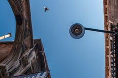 Nedersta sikt av den traditionella gatalampan på ett gammalt Venetian hus mitt i dagen med en flygfågel i en blått Royaltyfria Foton