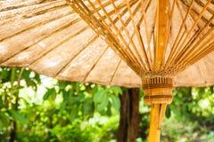 Nedersta sikt av det gamla paraplyet och trädet arkivfoton