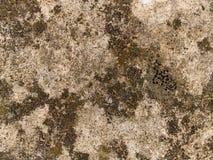 Nedfläckad betongabstrakt begrepp Arkivbilder