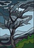 nedfläckad tree för exponeringsglas Royaltyfria Bilder
