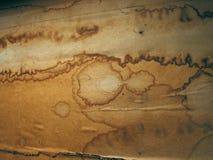 nedfläckad wallpaper Arkivbilder