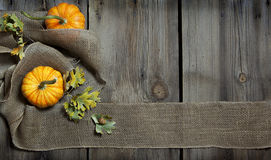 Nedgång Autumn Banner royaltyfria foton