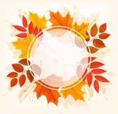 Nedgång Autumn Colorful Leaves Background stock illustrationer