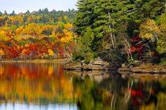 Nedgång Autumn Colors Water Reflection Royaltyfri Fotografi