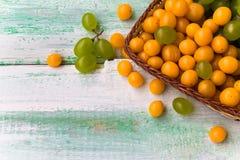 Nedgång för natur för mat för höst för bakgrundsfruktmarknad trä Royaltyfri Fotografi