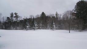 Nedgång för tung snö på öppet landskap arkivfilmer