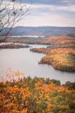 Nedgång Foilage i New Hampshire royaltyfri foto