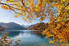 Nedgång i Alpsee sjön Royaltyfria Foton
